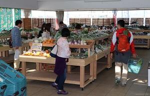朝穫れの野菜がいっぱい!